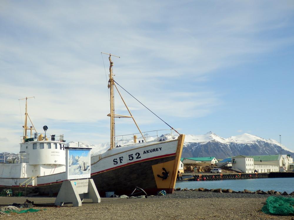 北欧旅行アイスランド・ホプン_6