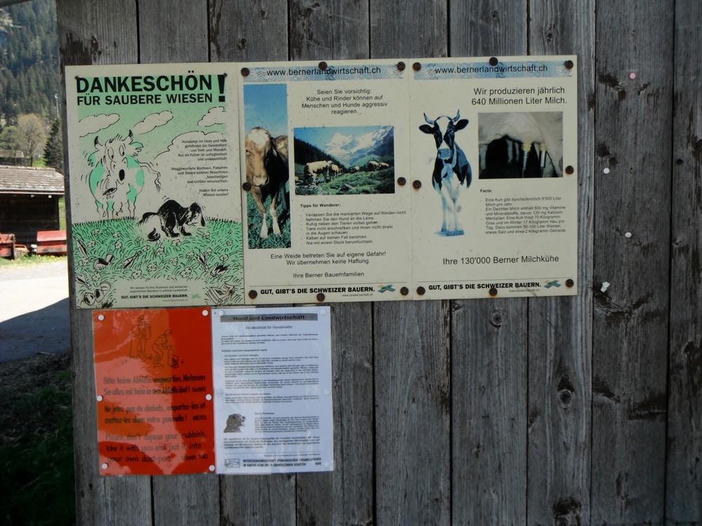 スイス・カンデルシュテーク観光_39.jpg