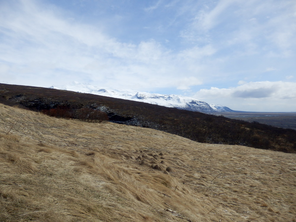 北欧旅行アイスランド・スカフタフェットル国立公園_17