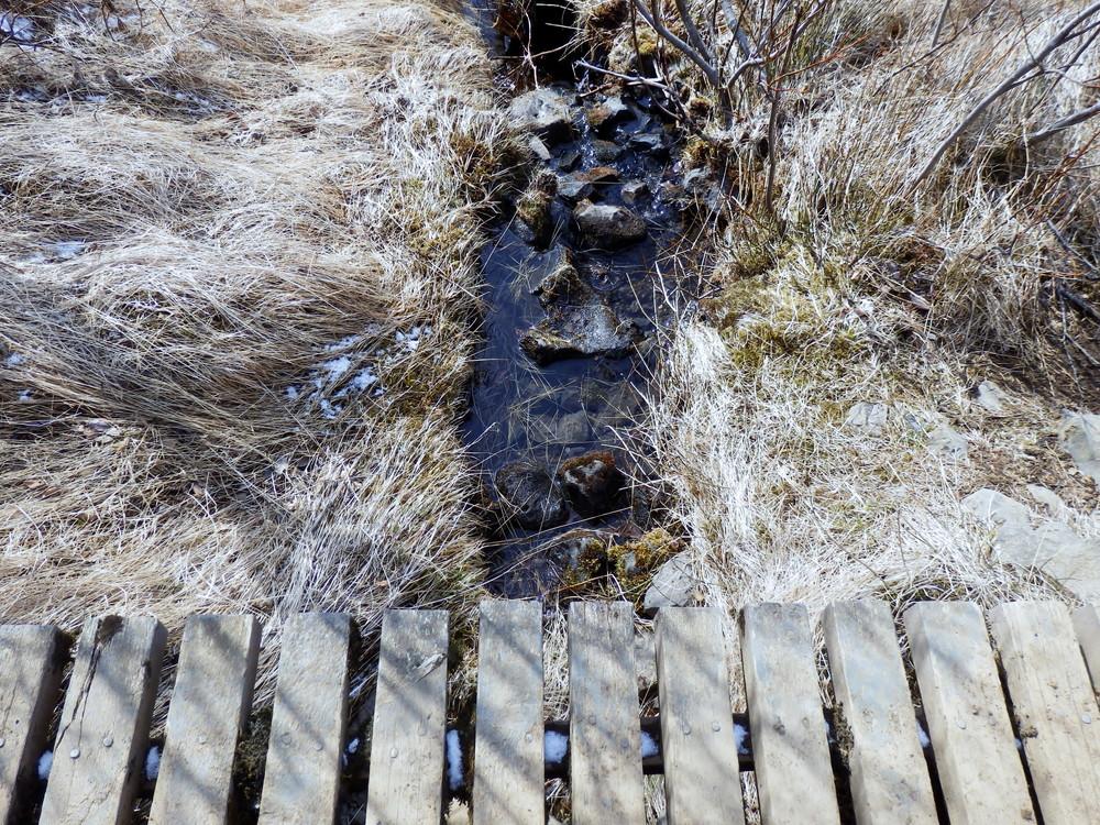 北欧旅行アイスランド・スカフタフェットル国立公園_27